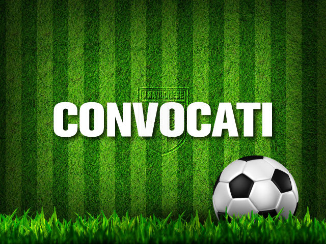 Cittanovese - Vibonese: Convocati immagine 4137 US Vibonese Calcio