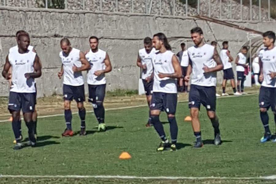Domani il secondo test per la Vibonese immagine 8443 US Vibonese Calcio