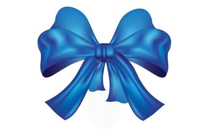 Fiocco azzurro in casa Vibonese immagine 13447 US Vibonese Calcio