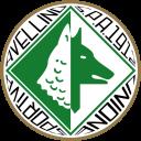 Avellino vs Vibonese immagine 16017 US Vibonese Calcio