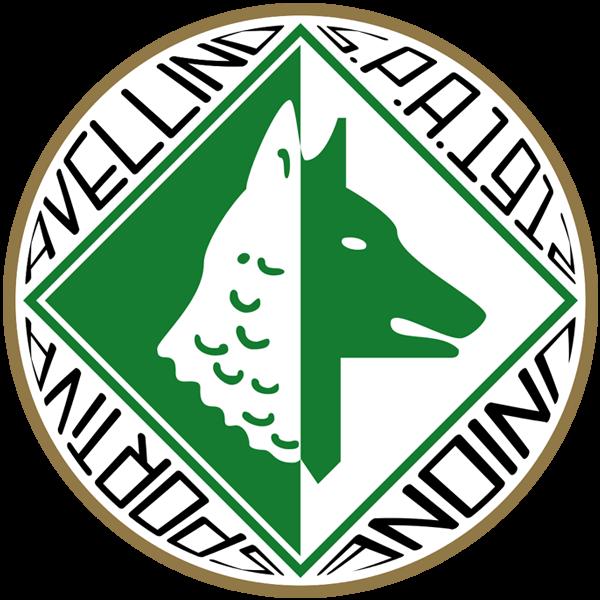 Avellino immagine 16017 US Vibonese Calcio