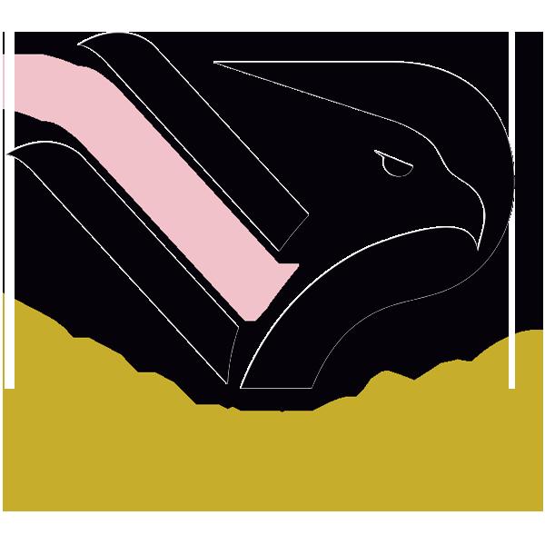 Palermo immagine 16008 US Vibonese Calcio