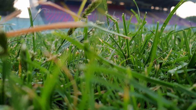 ASPETTANDO VIBONESE - VIRTUS FRANCAVILLA | Numeri e curiosità immagine 14247 US Vibonese Calcio