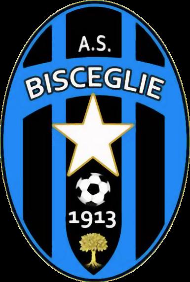 Bisceglie immagine 16254 US Vibonese Calcio