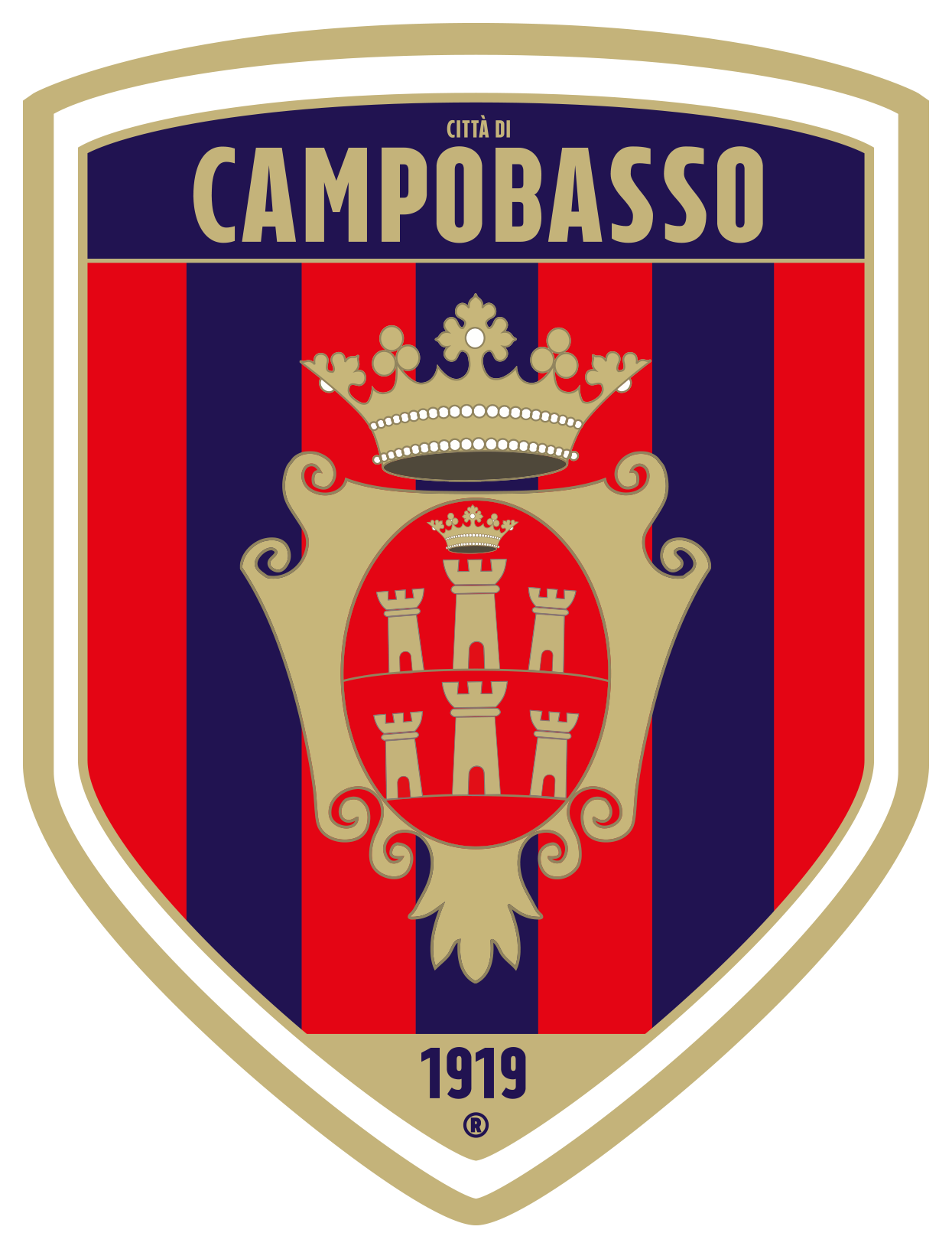 Campobasso immagine 17402 US Vibonese Calcio
